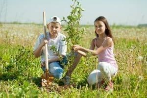 Teens planting trees