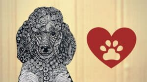 art showing a puppy face